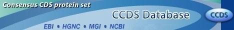CCDS banner