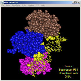 molecular modeling database mmdb help document