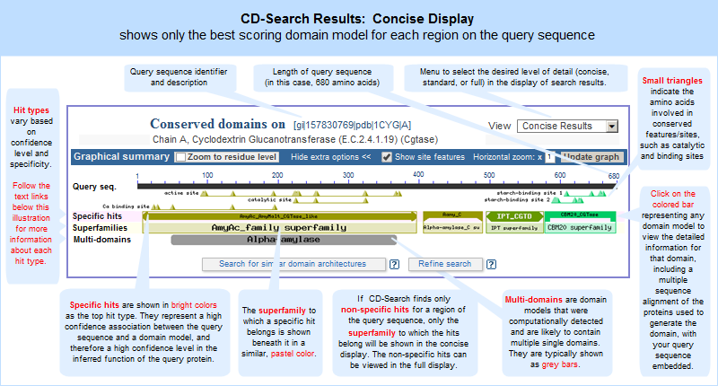 How To Use the Conserved Domain Database (CDD): identify putative