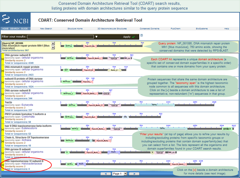 Illustration Of CDART Search Results Which List Proteins That Have Domain Architectures Similar To Your