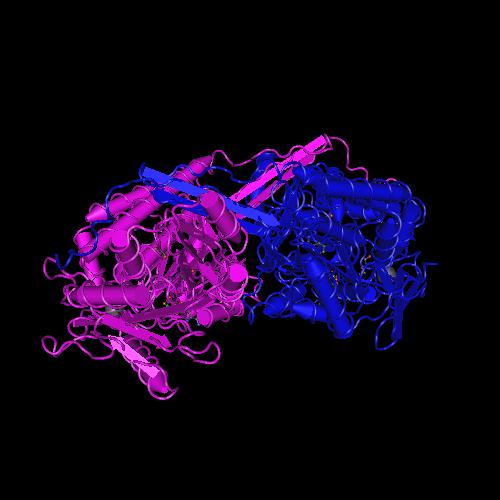 Molecular graphic for MMDB ID 107775 biounit 1