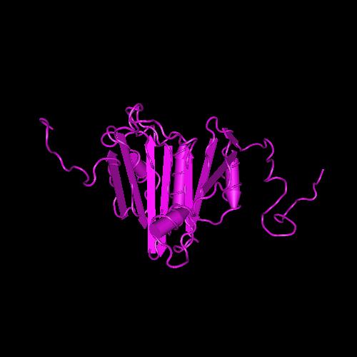 Molecular graphic for MMDB ID 107898 biounit 1