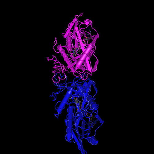 Molecular graphic for MMDB ID 110445 biounit 1