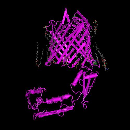 Molecular graphic for MMDB ID 113694 biounit 1