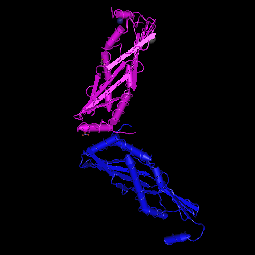 Molecular graphic for MMDB ID 113739 biounit 1