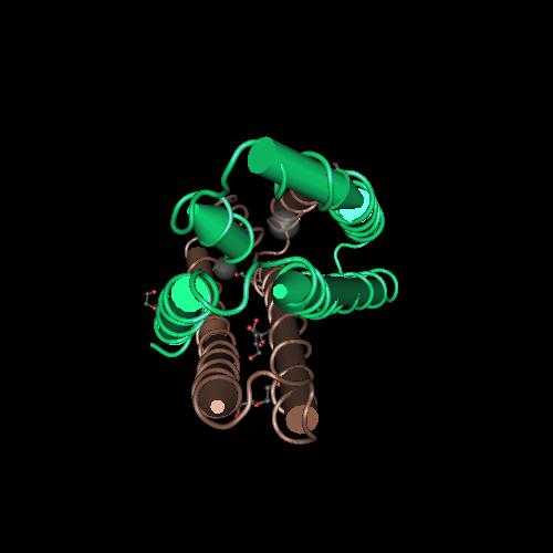 Molecular graphic for MMDB ID 114446 biounit 1