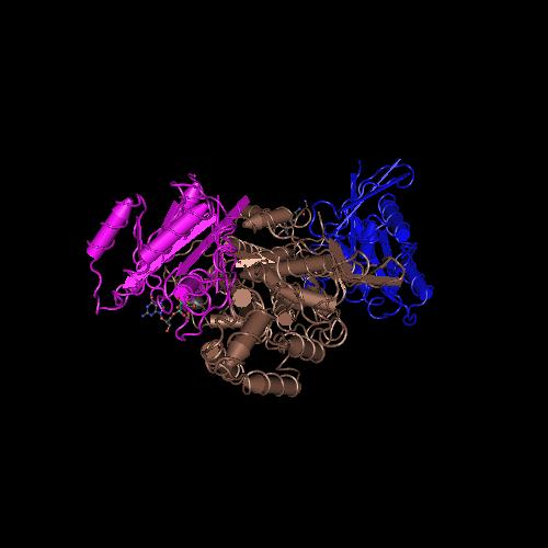 Molecular graphic for MMDB ID 118299 biounit 1