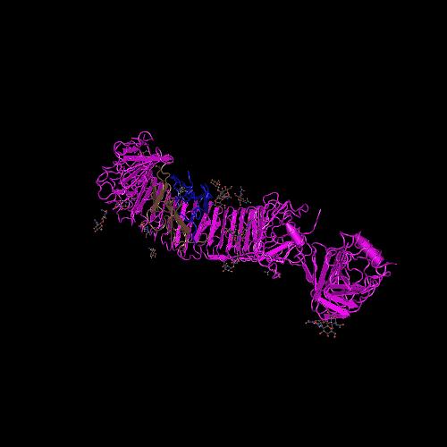 Molecular graphic for MMDB ID 119028 biounit 1