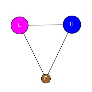 schmatic for structure MMDB ID=12025 biounit 1
