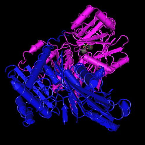 Molecular graphic for MMDB ID 13430 biounit 1