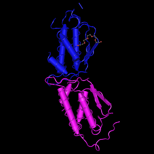 Molecular graphic for MMDB ID 13934 biounit 1