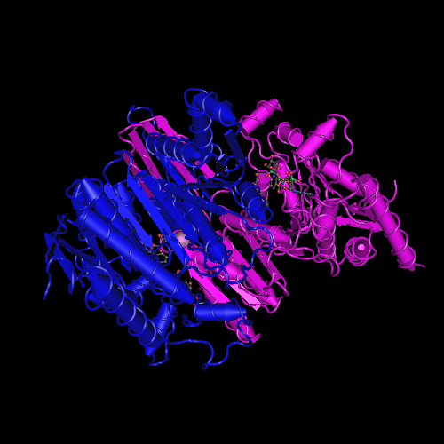 Molecular graphic for MMDB ID 28296 biounit 1
