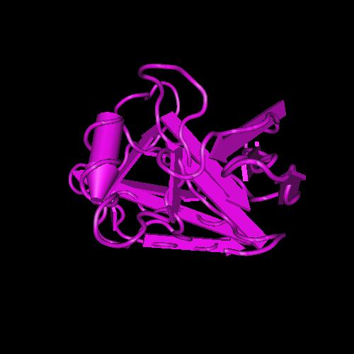 Molecular graphic for MMDB ID 30719 biounit 1