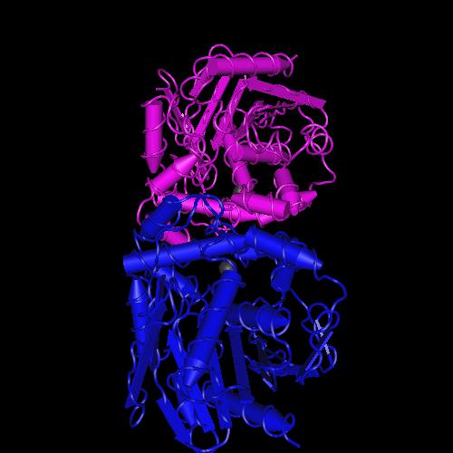 Molecular graphic for MMDB ID 37446 biounit 1