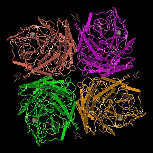 Molecular graphic for MMDB ID 44846 biounit 1