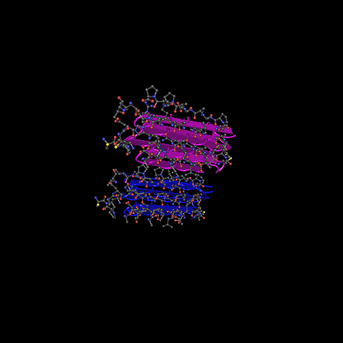 Molecular graphic for MMDB ID 66882 biounit 1