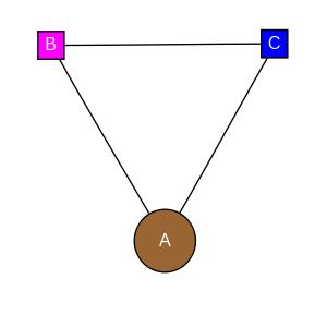 schmatic for structure MMDB ID=72083 biounit 1