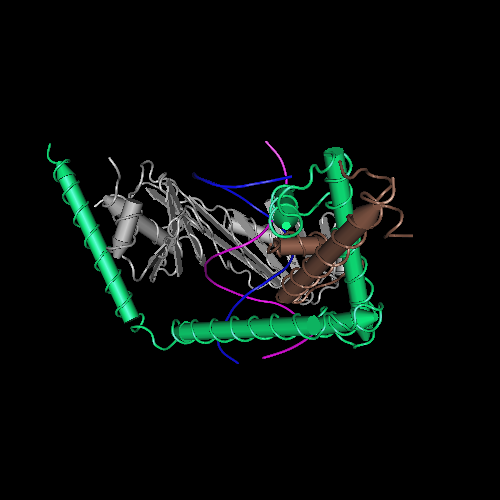 Molecular graphic for MMDB ID 73719 biounit 1