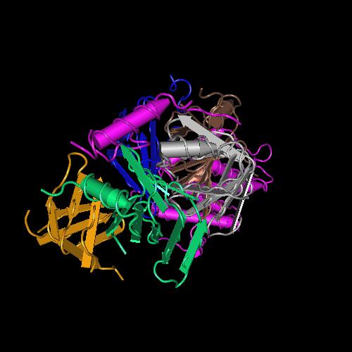 Molecular graphic for MMDB ID 92764 biounit 1