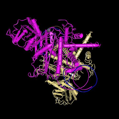 Molecular graphic for MMDB ID 97519 biounit 1