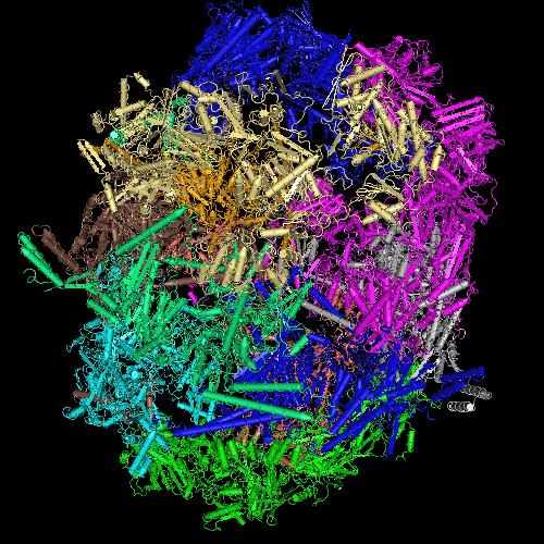 Molecular graphic for MMDB ID 99559 biounit 1