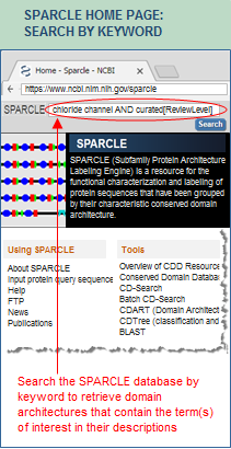 About SPARCLE: Subfamily Protein Architecture Labeling Engine
