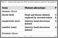 Table 9.1. Maternal effect genes that effect the anterior-posterior polarity of the Drosophila embryo.