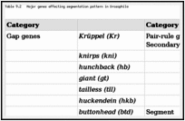 Table 9.2. Major genes affecting segmentation pattern in Drosophila.