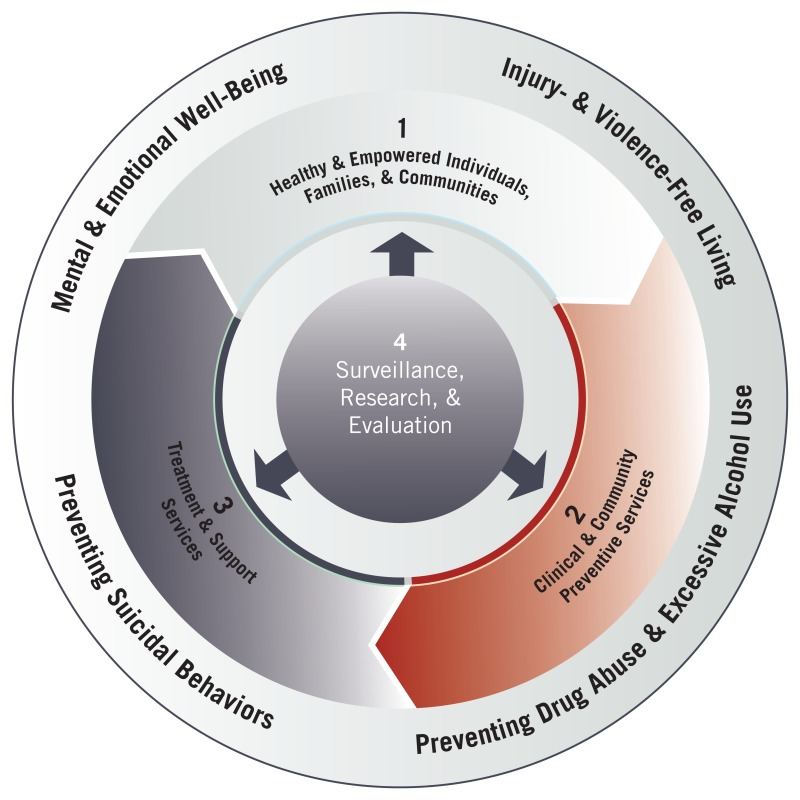 Picture of organization of goals and objectives with three strategic directions.