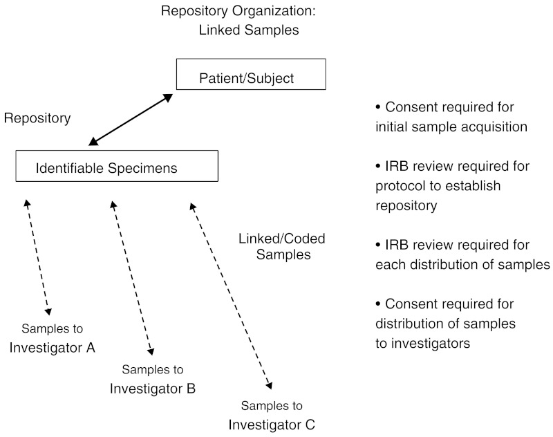 FIGURE 12-3. Repository organization: Linked samples.