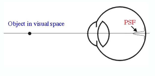 Figure 8. Image of a point at the back of the eye.