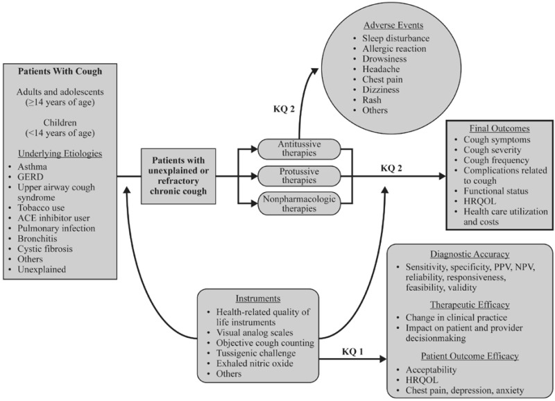 Figure 1, Analytic framework - Assessment and Management of