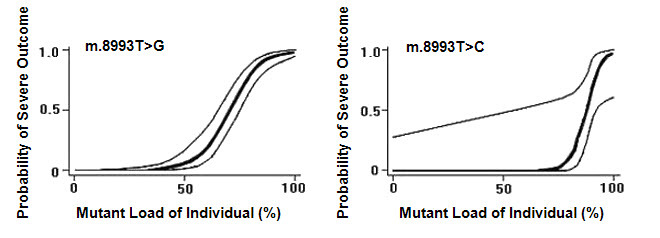 Figure 1. . Estimated probability of a severe outcome (95% CI) for an individual with the mtDNA m.