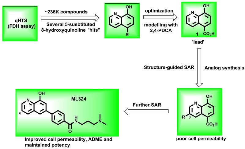 Figure 16 Probe Developmentmedicinal Chemistry Optimization