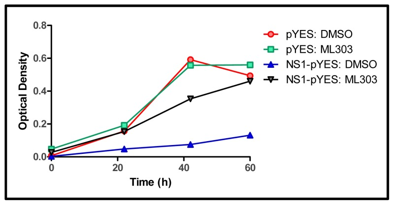 Discovery of Small Molecule Influenza Virus NS1 Antagonist - Probe