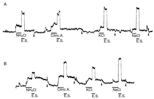 FIGURE 4.4. (A) Summated whole-nerve recordings of ipsilateral glossopharyngeal nerve responses to 0.