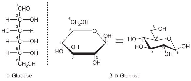FIGURE 1.2. Open-chain and ring forms of glucose.