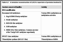 Table 6.2. A tentative reconstruction of LUCA's repertoire of proteins involved in RNA metabolism.