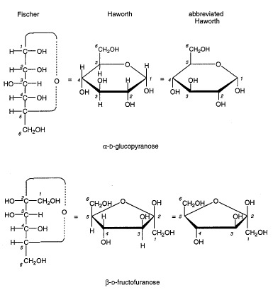 Saccharide Structure and Nomenclature - Essentials of Glycobiology ...