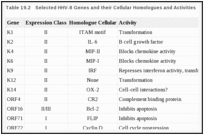 Table 19.2. Selected HHV-8 Genes and their Cellular Homologues and Activities.
