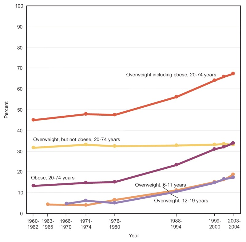 Figure 13. Overweight and obesity, by age: United States, 1960–2004.