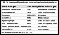 Table 7.2. Examples of human disease genes that have homologs in Saccharomyces cerevisiae.