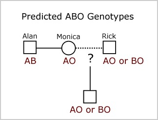 Think, that abo blood group genetics valuable message