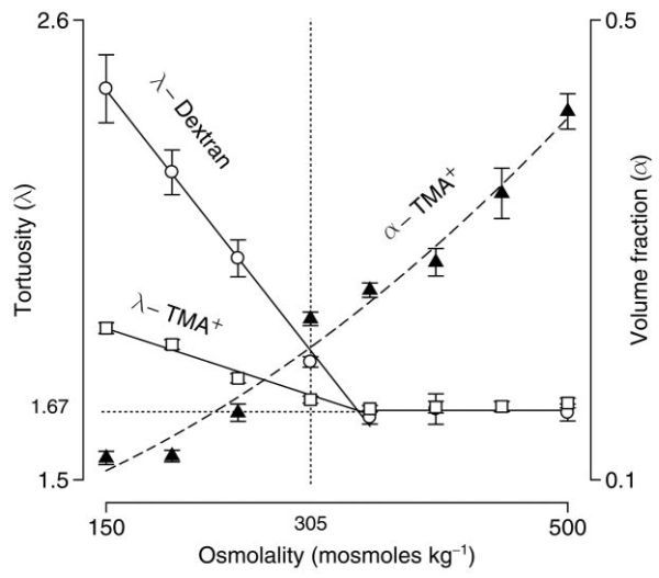 FIGURE 10.10. Independence of extracellular tortuosity and volume fraction during osmotic stress in rat neocortex in vitro.