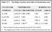 Table 17-1. The Major Cyclins and Cdks of Vertebrates and Budding Yeast.
