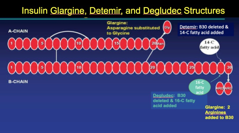Insulin – Pharmacology, Therapeutic Regimens, and Principles of