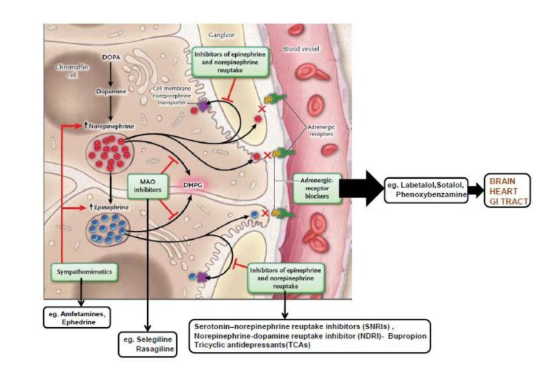 pheochromocytoma hipertónia