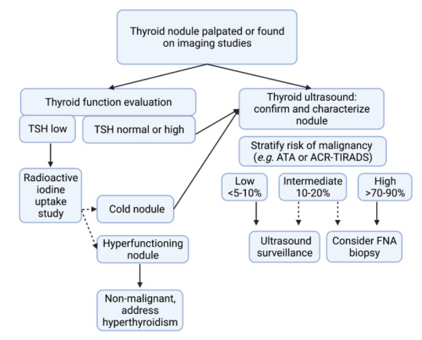 Thyroid Nodules And Cancer In The Elderly Endotext Ncbi Bookshelf
