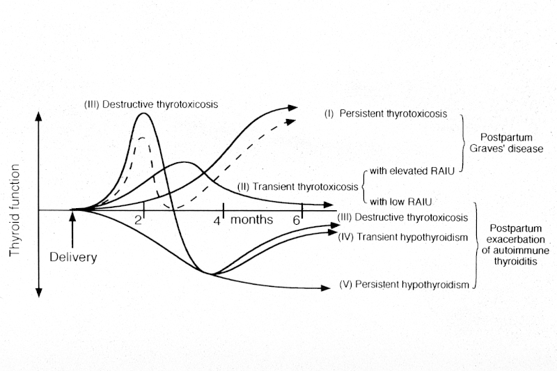 figure 14-15(from 389) patterns of postpartum thyroid dysfunction