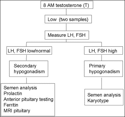 Hypogonadotropic Hypogonadism (HH) and Gonadotropin Therapy